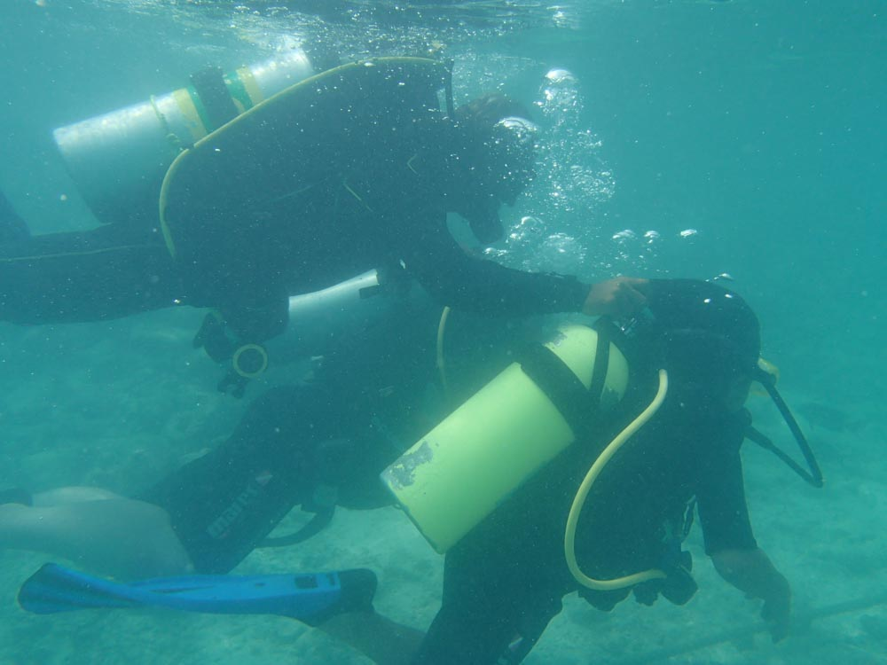 snorkeling bandos maldives-9