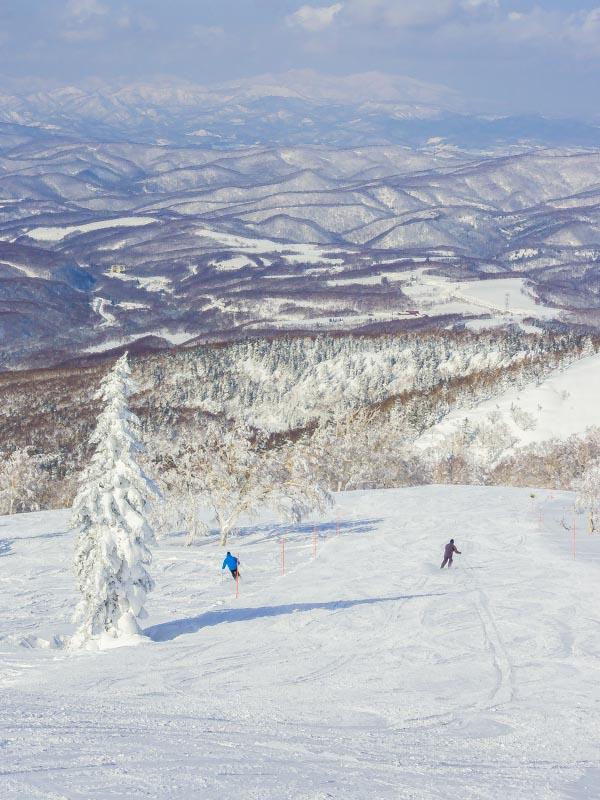 防水機能が付いた軽いミラーレスカメラはスキー場に気軽に持って行けるのでアクティブなファミリーにおすすめです。