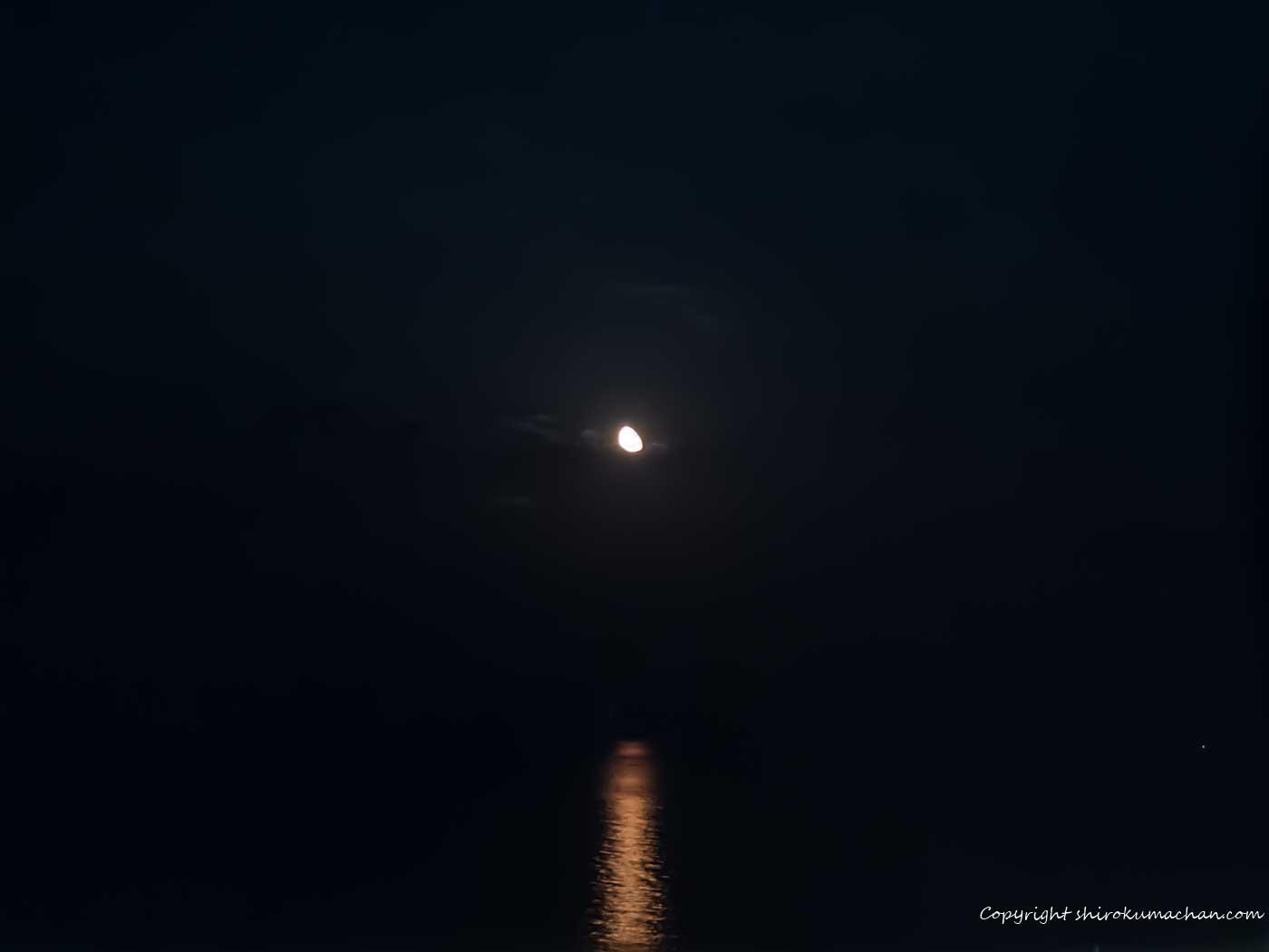 moon avenue seagaia miyazaki