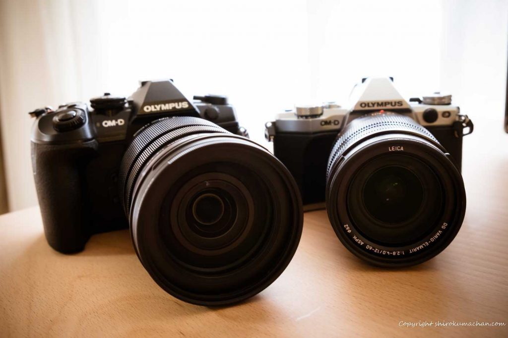 PanaLeica with Olympus Mirrorless Camera
