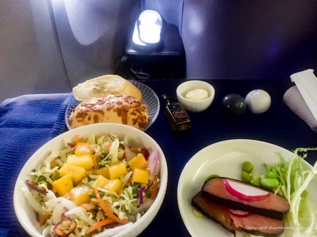 United Airlines Business Class Reviews-13