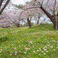 北海道松前旅行記