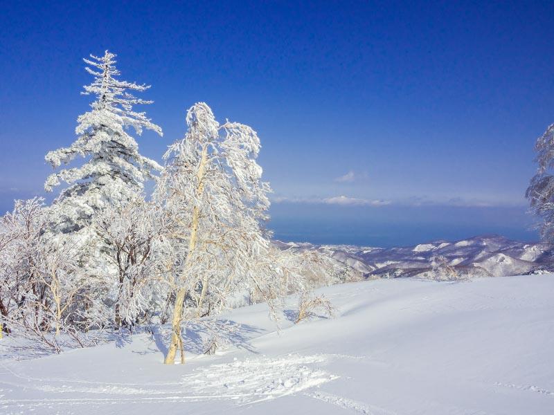 キロロ ゲレンデ 樹氷 (4)