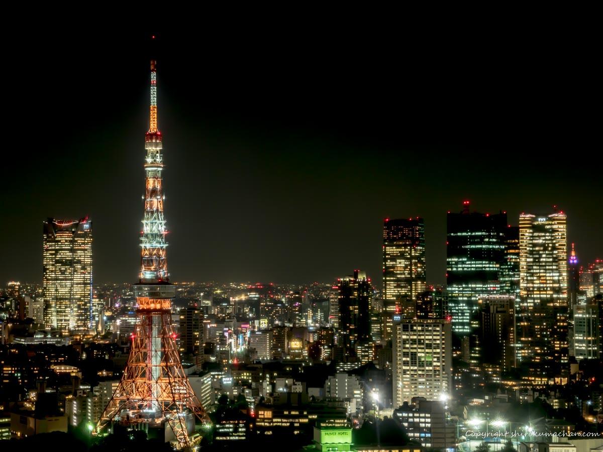 東京観光の穴場スポット 世界貿易センタービル
