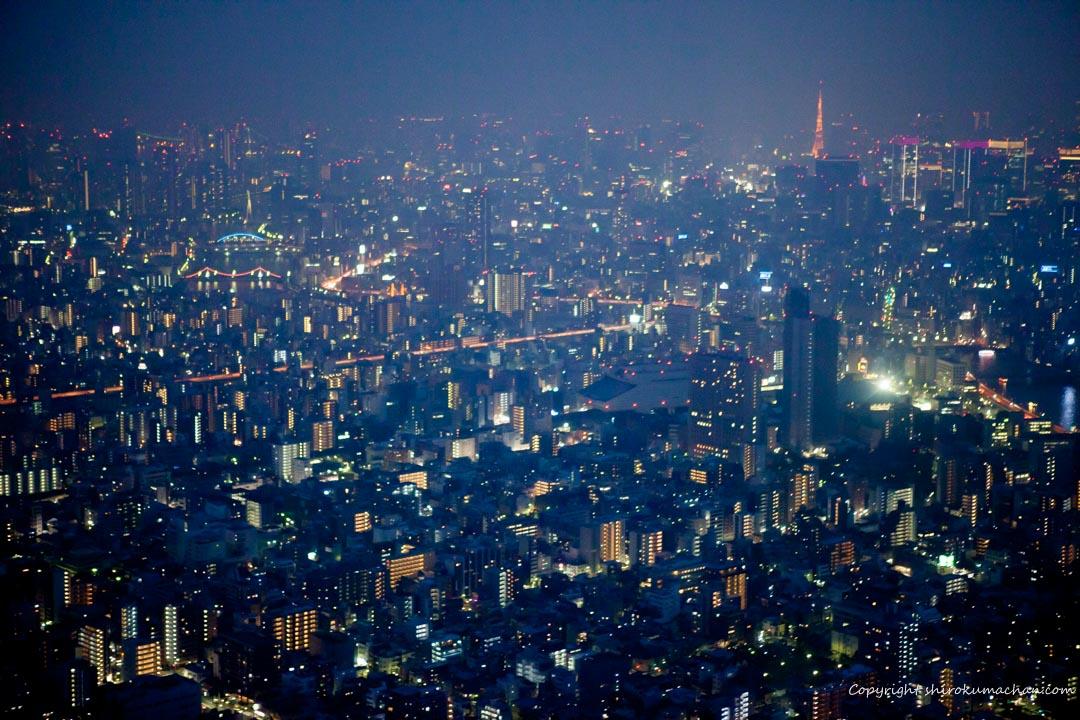 浅草観光 スカイツリー 東京のおすすめ観光スポット
