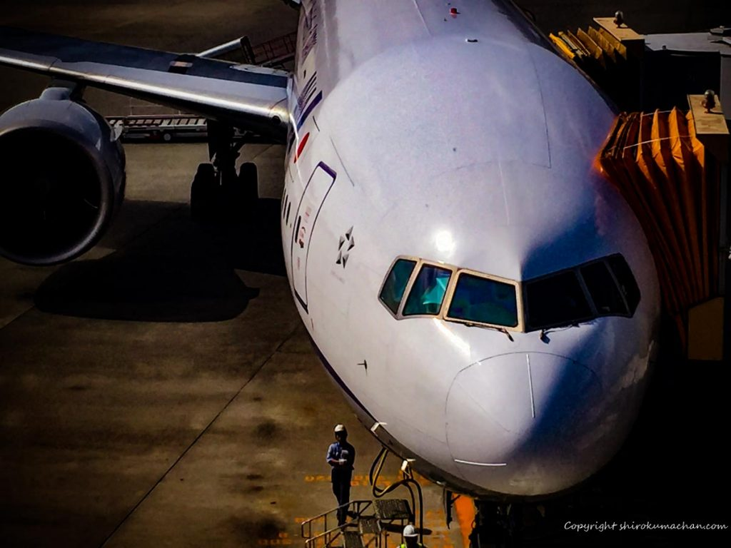 ANA Suite Lounge Narita-Airplane