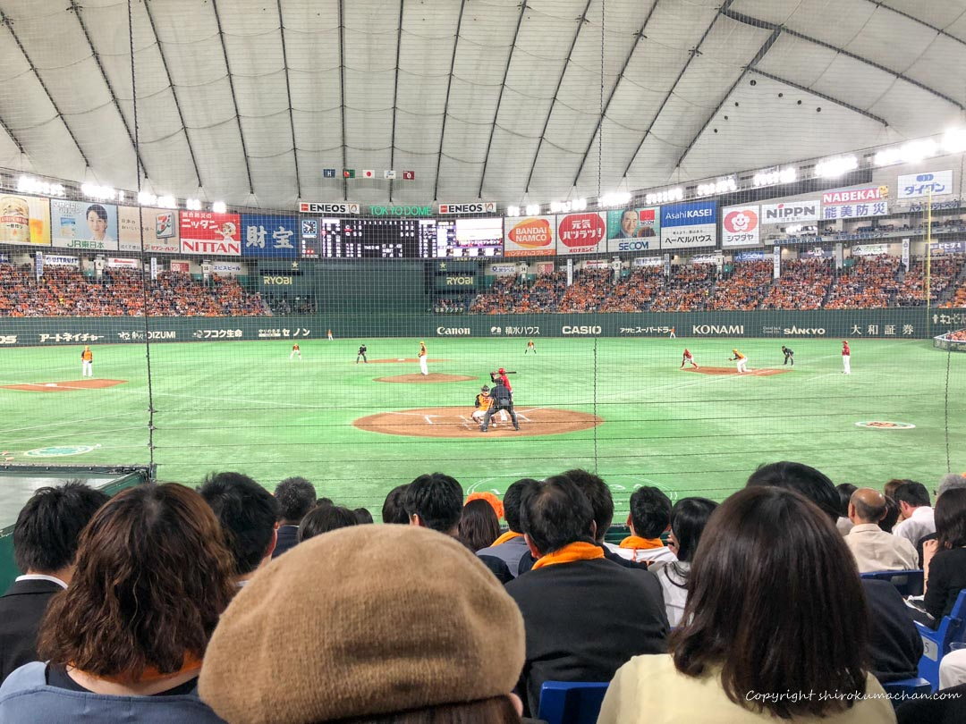 Tokyo Dome Base Ball with Canned Bear