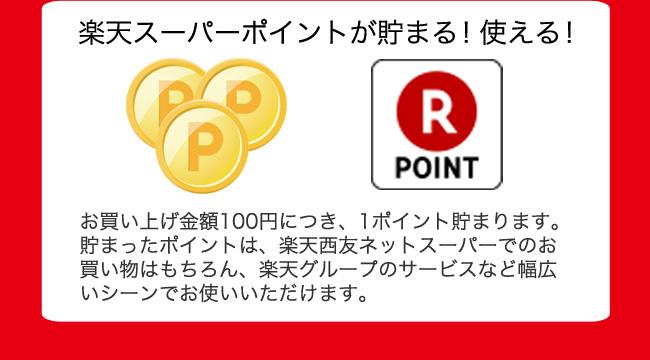 Rakuten Seiyu Net Super