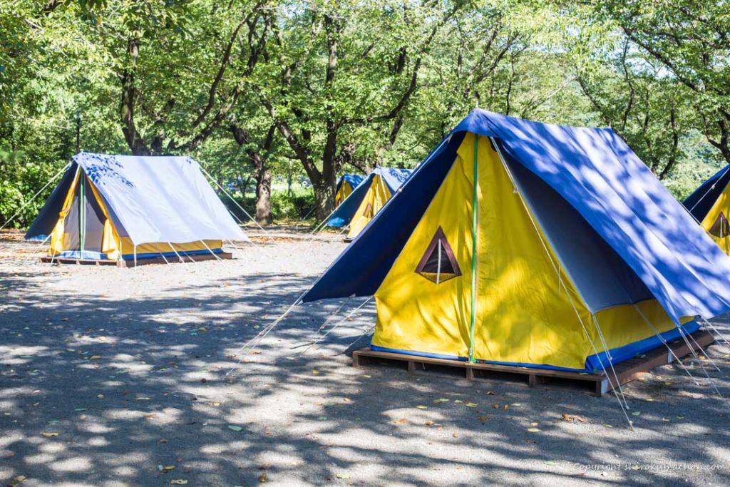 上大島キャンプ場-レンタルテント