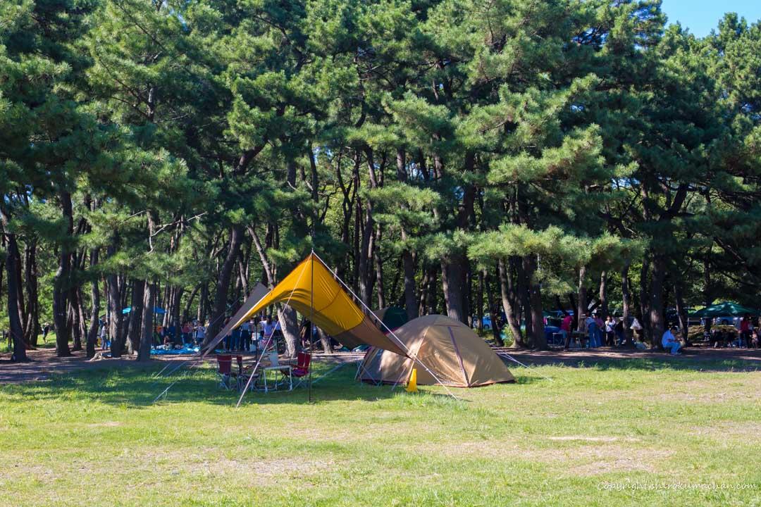 上大島キャンプ場ブログ