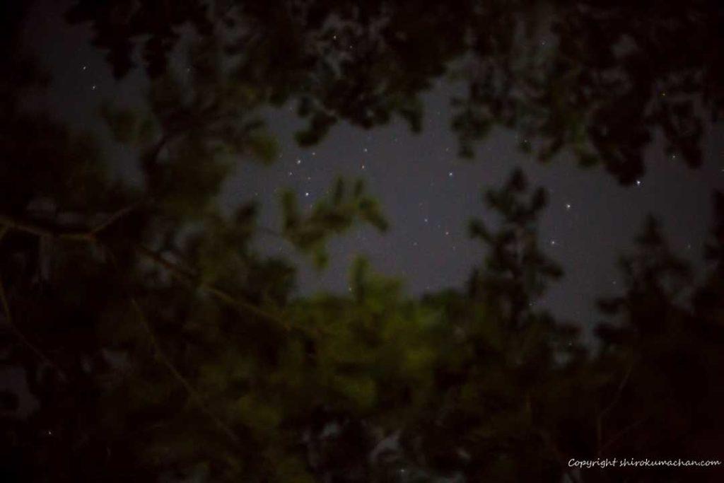 上大島キャンプ場-星