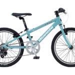 【令和元年10月】子供用20インチ軽量自転車ランキング オシャレ小学生にもぴったり