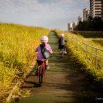 【都内】子供とサイクリング 幼稚園年長と小学2年生で聖地 荒サイに行ってきた話。